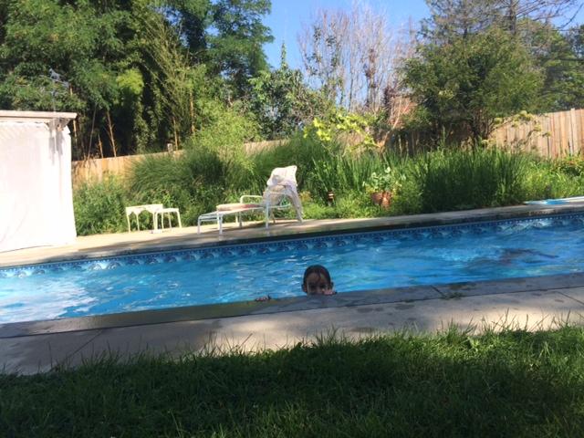 Pool ©mom-101.com